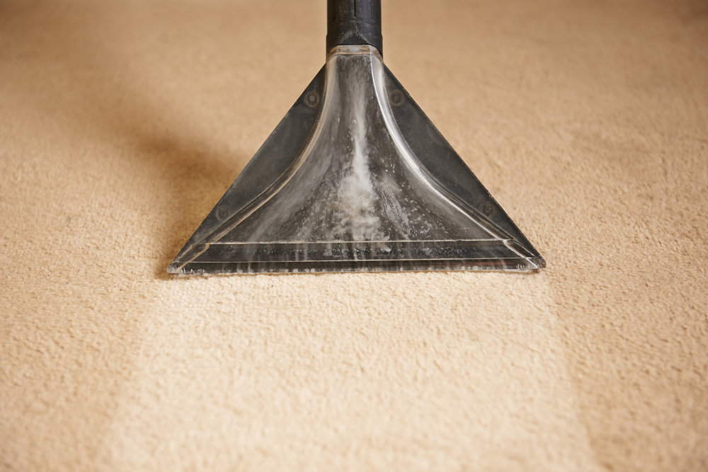 Carpet Cleaning in Vancouver BC